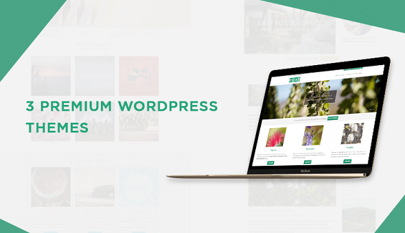 3-Premium-WordPress-Themes-1.png