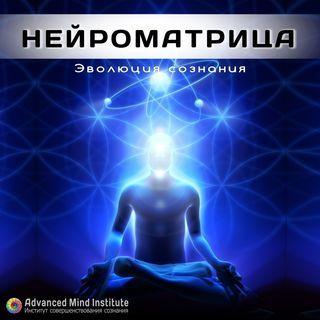 Neuromatrix_2941001450.jpg